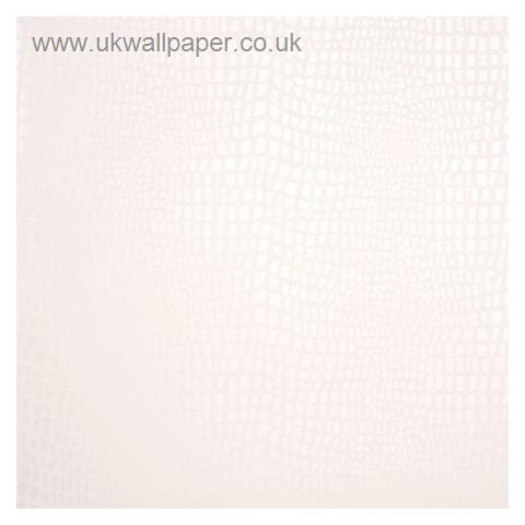 Clarke and Clarke Couture Wallpaper Strike Shell