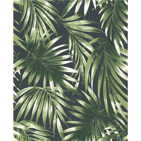 Super Fresco Easy kabuki wallpaper elegant leaves 106413