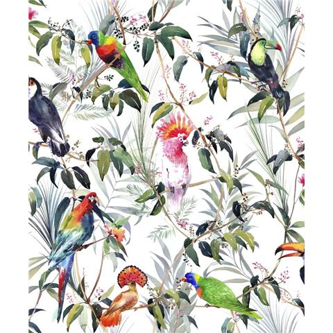 Graham and Brown Fresco Wallpaper Tropical 106624
