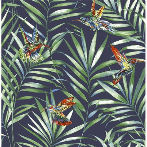 Graham and Brown Fresco Wallpaper Hummingbird 106627