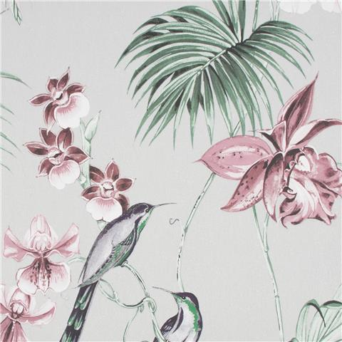 JULIEN MACDONALD Utopia exotic WALLPAPER 112082 grey