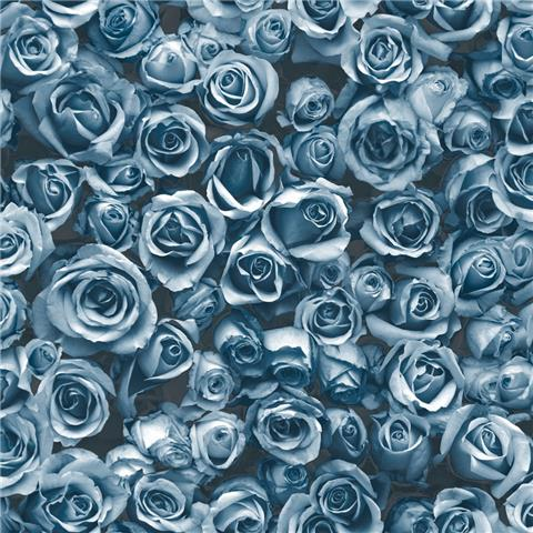 Muriva Rosalee Wallpaper 158504 Blue