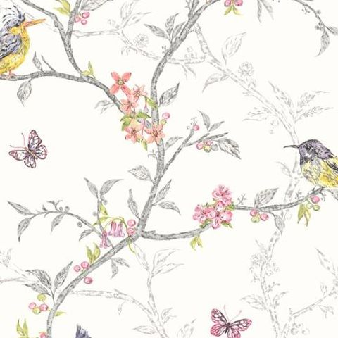 Holden Statement Feature Wallpapers Ornithology Phoebe White 98080