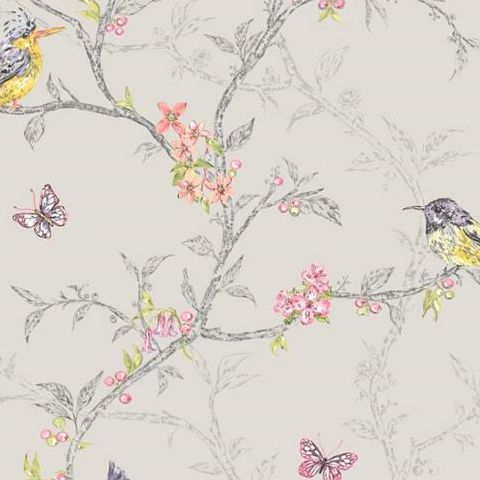 Holden Statement Feature Wallpapers Ornithology Phoebe Dove 98081