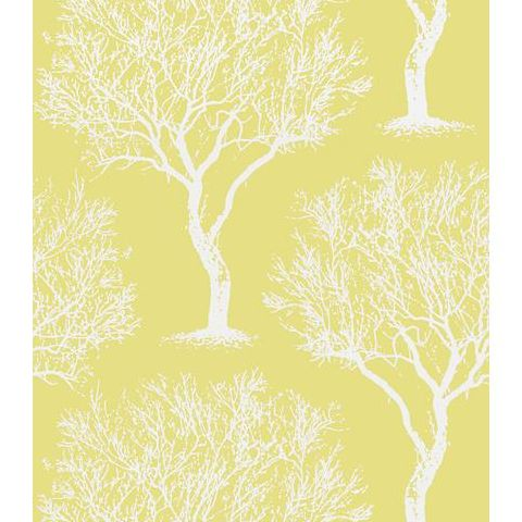 Anna French Seraphina Winfell Forest Wallpaper AT6003 Citron