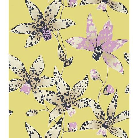 Anna French Seraphina Spotted Orchid Wallpaper AT6046 Citron