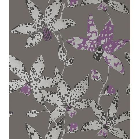 Anna French Seraphina Spotted Orchid Wallpaper AT6047 Silver on Charcoal