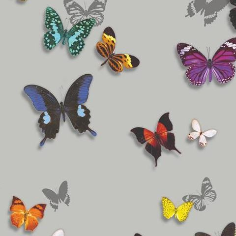 Arthouse Imagine Tropics Wallpaper Bahia Butterfly Silver