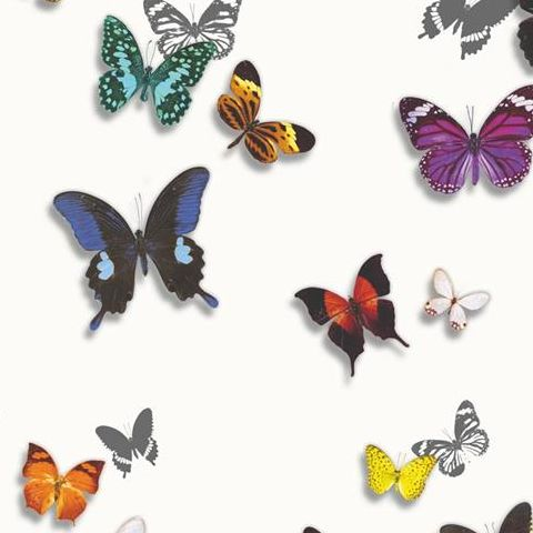 Arthouse Imagine Tropics Wallpaper Bahia Butterfly White