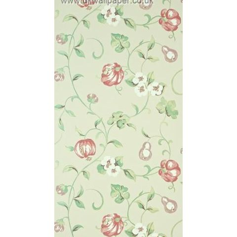 Sanderson A Painters Garden Wallpaper Pear and Pomegranate 103