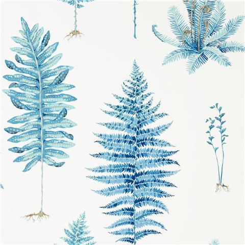 Sanderson Glasshouse Wallpaper Fernery 216635 China Blue