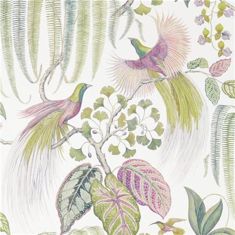 Sanderson Glasshouse Wallpaper Bird of Paradise 216654 Orchid