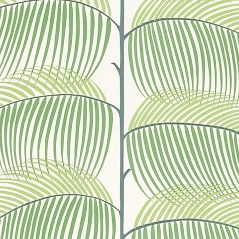 Sanderson Voyage of Discovery Wallpaper Manila Tropical Leaf 213367