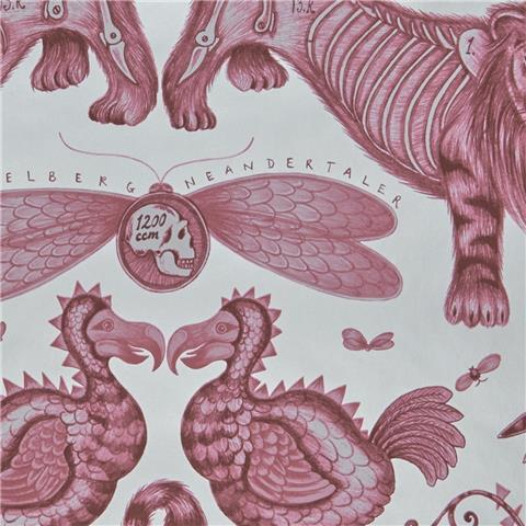 Clarke & Clarke Animalia Wallpaper by Emma J Shipley Extinct W0100-03