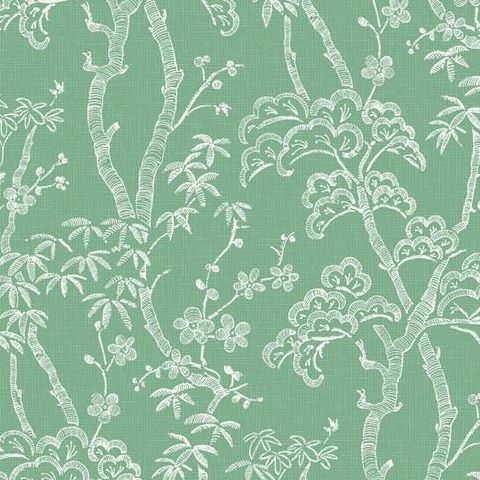 A Street Prints Mistral Wallpaper-Bonsai FD24352 Green