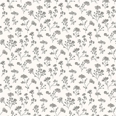 GALERIE MINIATURES 2 WALLPAPER-cow parsley g67870 black/white