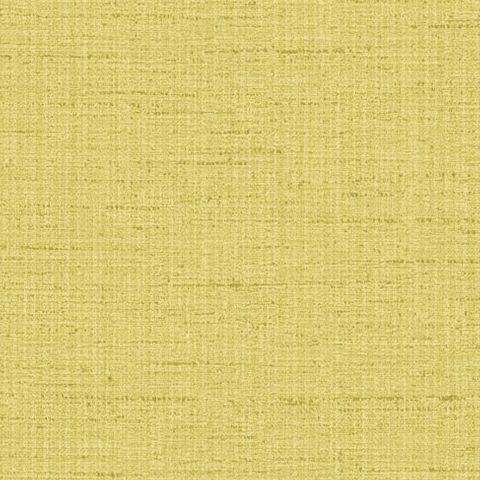 Harlequin Amazilia Wallpaper-Raya Plain 111046