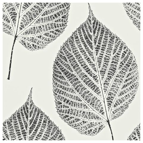 Harlequin Momentum 2 Wallpaper Leaf 110373 Onyx/Chalk
