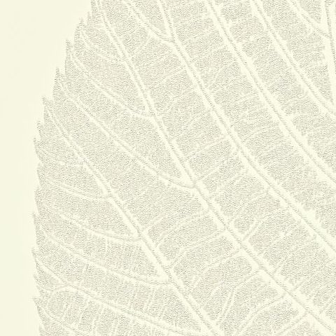 Harlequin Statement Walls Wallpaper-Leaf 110972